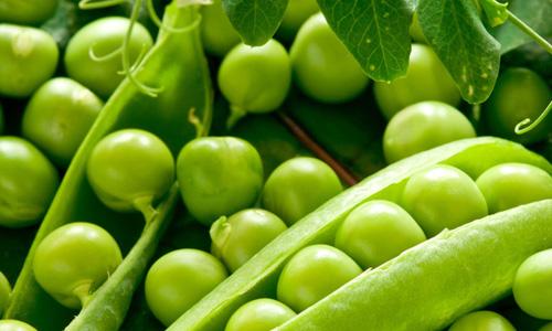 Tắm trắng bằng đậu xanh được nhiều eva ưa chuộng