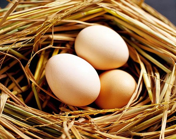 Nâng ngực nhờ trứng gà