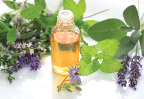 Tinh dầu bạc hà cũng được xếp vào nhóm tinh dầu giảm mỡ bụng an toàn bởi khả năng làm nóng cơ thể giúp hóa lỏng và loại bỏ mỡ thừa.