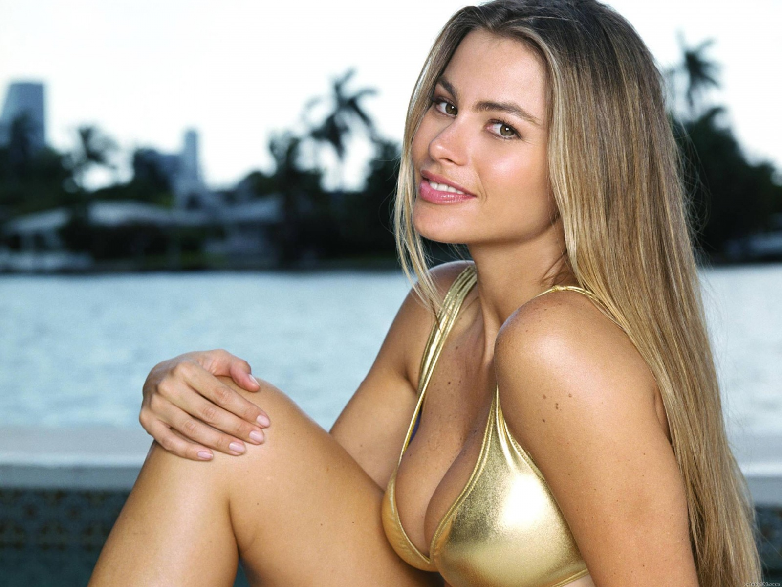Sofia Vergara từng thừa nhận vòng một khủng giúp cô nổi tiếng tại Hollywood