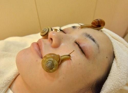 Trị tàn nhang bằng ốc sên có mặt lợi và cũng cũng có mặt hại