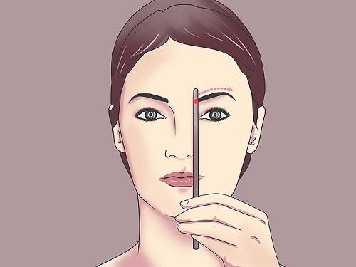 Điểm đầu lông mày được xác định bằng cách dóng song song với sống mũi