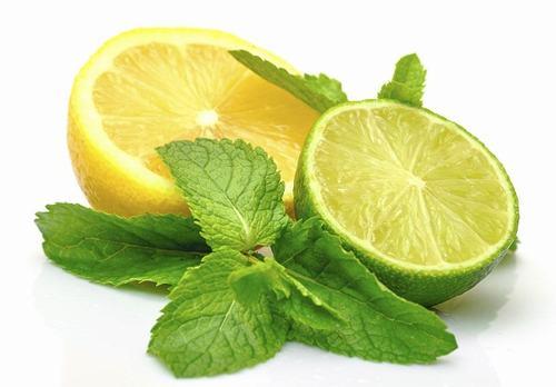 Tưởng chừng như chỉ là loại rau thơm ăn kèm trong các món ăn, rau húng quế thực chất còn có tác dụng hỗ trợ điều trị sẹo rỗ tự nhiên hiệu quả mà không phải ai cũng biết.