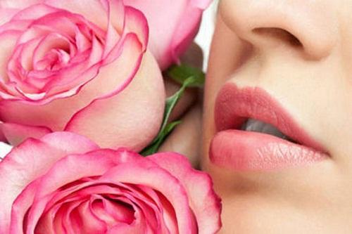 Cánh hoa hồng và sữa tươi có tác dụng làm mất các sắc tố thâm xỉn, giúp môi bạn mềm mịn và hồng tự nhiên
